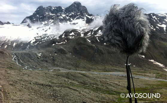 Field Recording - microphone on stand with professional wind shield
