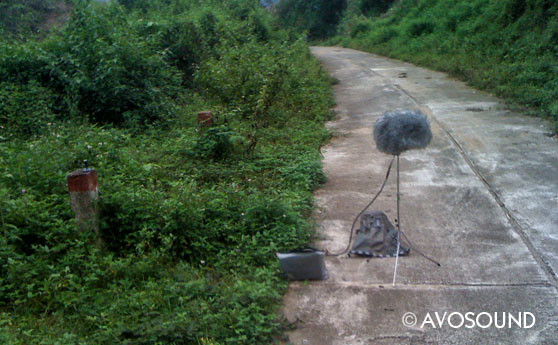 Field Recording - Sound recording in Vietnam - off the beaten path