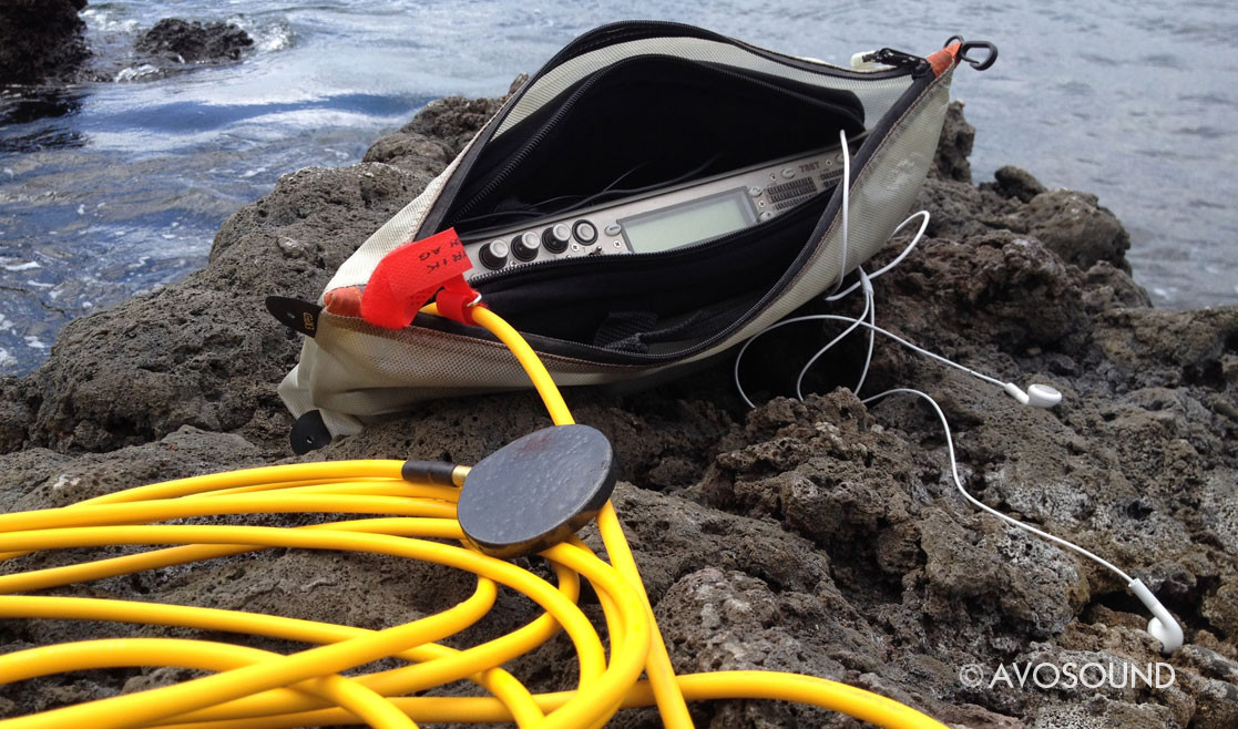 Dolphin Ear Hydrophon and Sound Devices 788T Recorder Tonaufnahmegerät in a waterproof bag