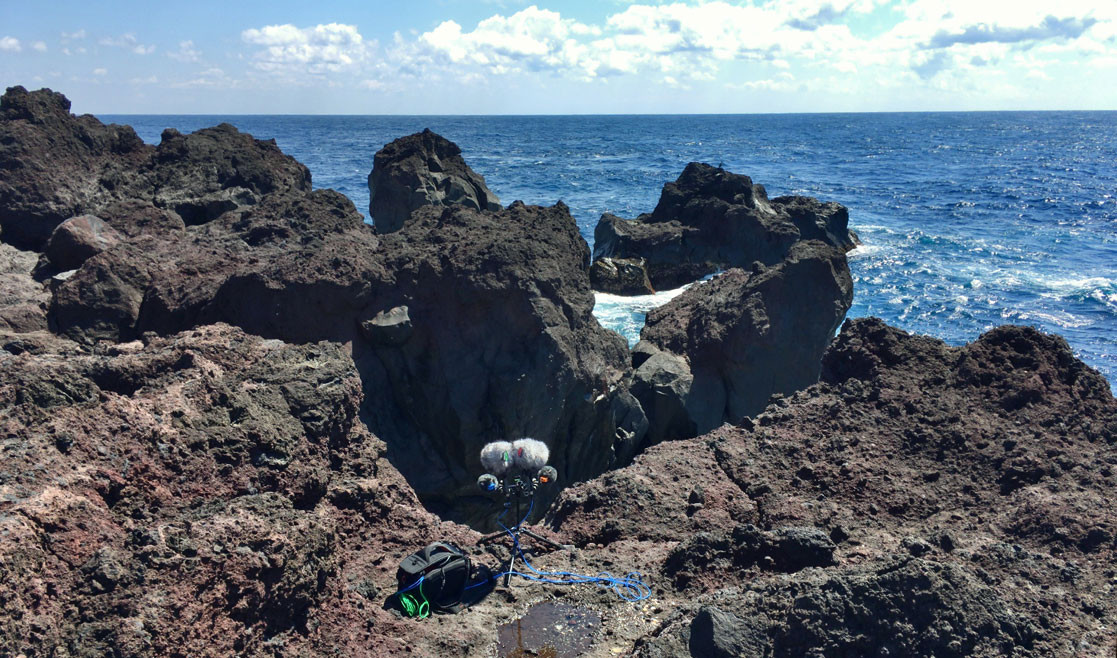 field recordist hide from japan records water sound