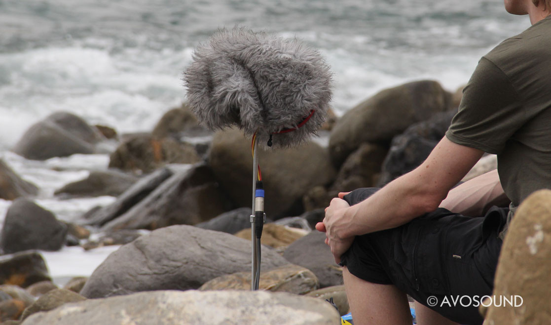 Sound recording on the beach - microphone with windshield