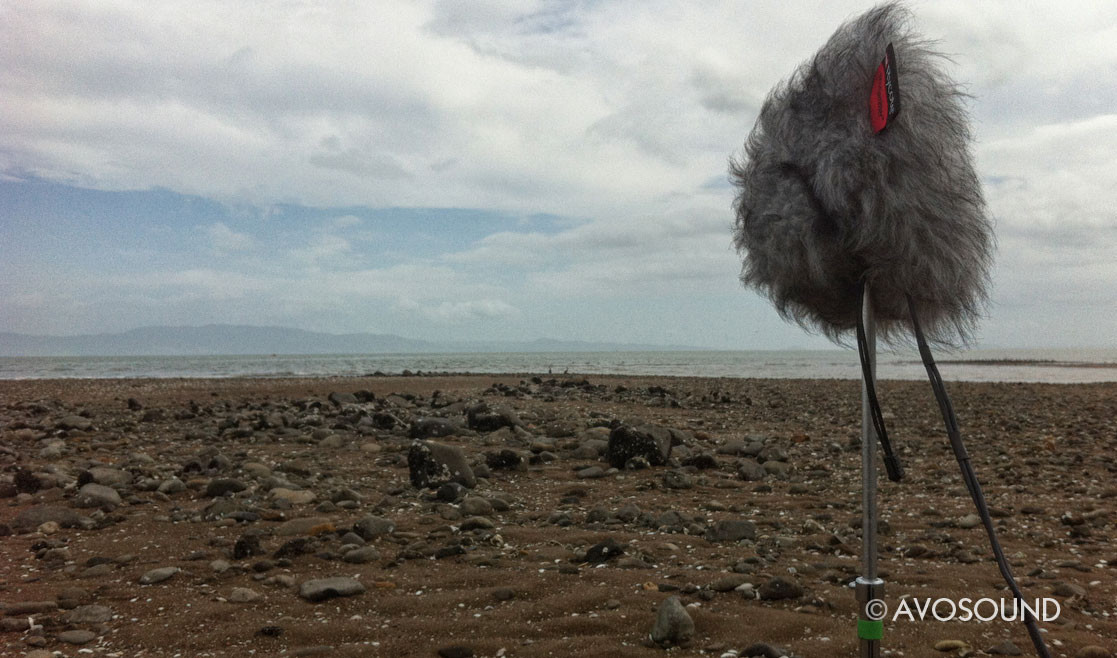 Microphone stand on a beach in New Zealand with Rycote windshields