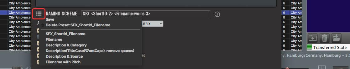 Soundminer File Naming Scheme - Vorlagen Speichern