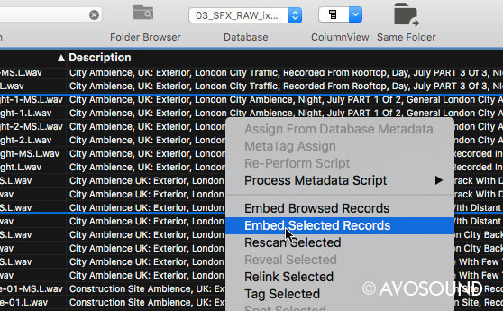 Save metadata to the audio file with Soundminer V5 Pro function: Embed Selected Records