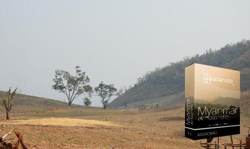 Der burmesische Dschungel abgeholzte Realität