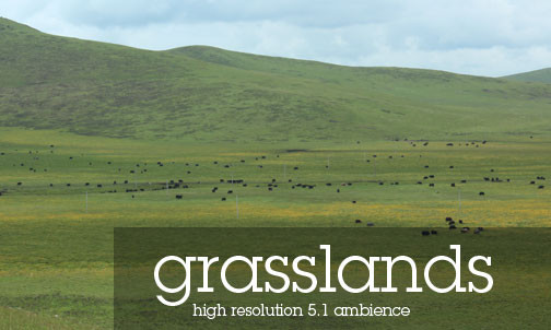 Tibetan Atmospheres Sound Effects Library - Tibetan Grasslands