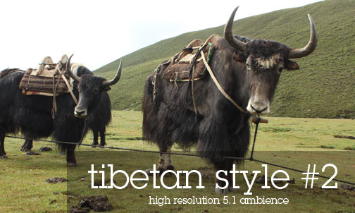 Tibetan Atmospheres Sound Effects Library Tibetan Yaks in the Highland