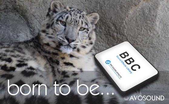 BBC Nature Geräusch Archiv mit über 2300 Aufnahmen von Tieren