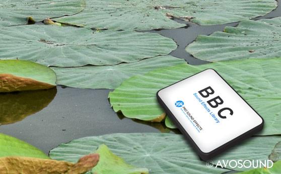 BBC Natur Geräusche Archiv - BBC Sumpf Atmosphären