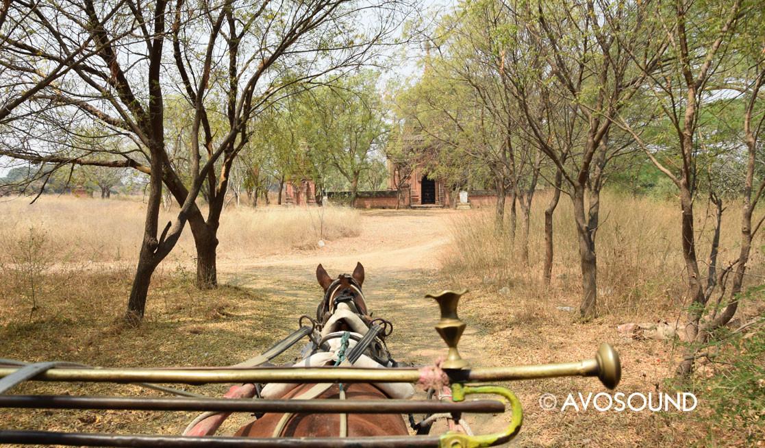 Travel Log Bagan: In a horse-drawn carriage in Bagan