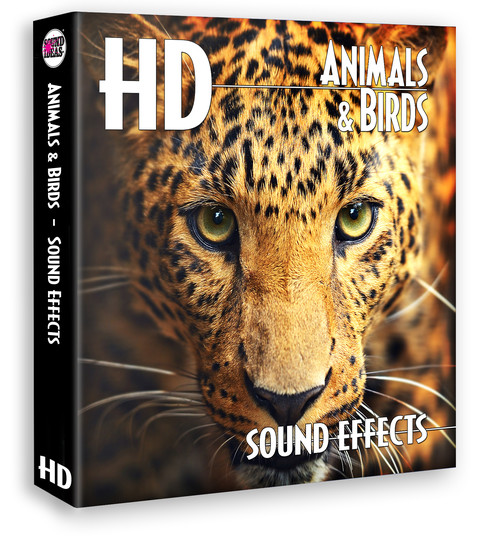 HD – Animals And Birds Sound Effects Product Artwork