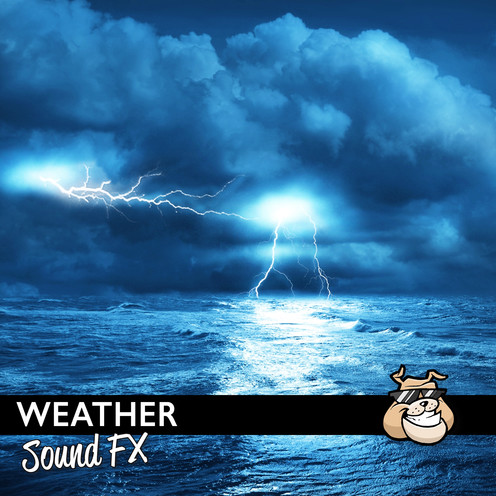 Sounddogs - Weather Product Artwork