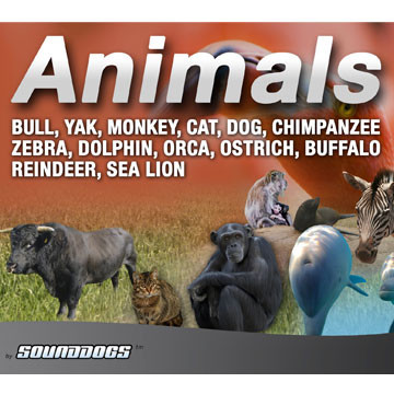 Sounddogs - Animals, by download Product Image