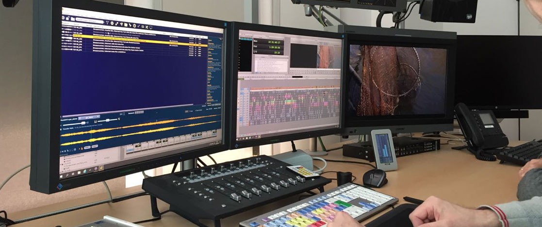 Avid Editing Suite With Soundminer HD Plus